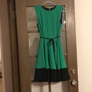 Green & Black Capitola Fit & Flare Dress Sz 4 (S)
